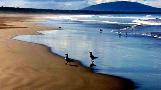 Kangaroo Valley is a short drive the ocean surf and famous Seven Miles beach, National Park, Fitzroy falls and also, the pristine white sands of Jervis Bay.