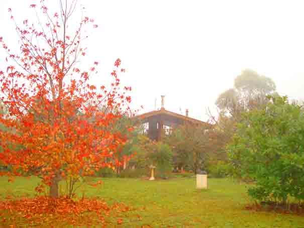 Romantic fog embraces  garden during winter. Galeria Aniela is set at the backdrop of breathtaking escarpment enjoying awesome views and many say that the property is a work of art in itself.