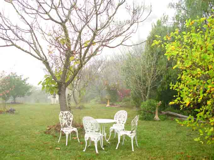 Romantic fog embraces and refresh garden during winter. Galeria Aniela is set at the backdrop of breathtaking escarpment enjoying awesome views and many say that the property is a work of art in itself.