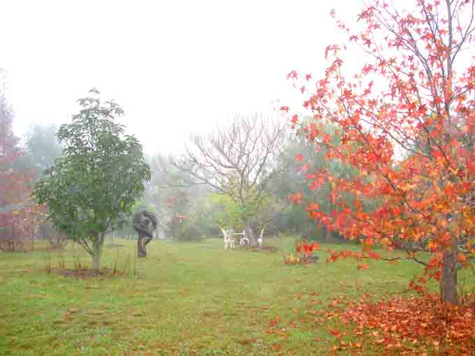 Beautiful fog embraces and refresh garden at winter. Galeria Aniela is set at the backdrop of breathtaking escarpment enjoying awesome views and many say that the property is a work of art in itself.